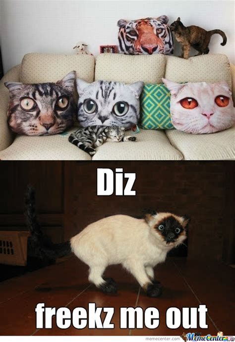 Pillow Meme - pillow memes best collection of funny pillow pictures