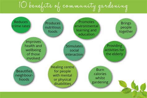 benefits of community gardens how to set up a community garden david domoney