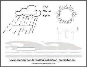 Water Cycle Worksheets Label