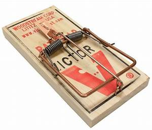 6 Victor M200 Rat Snap Traps Traditional Wooden Rodent