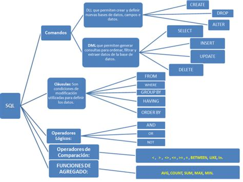 bases de datos neumannsoft