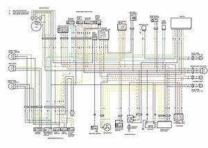 1974 Sportster Directional Light Wiring Diagram In 2020