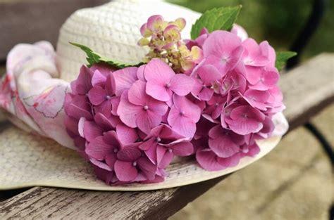 รูปภาพฟรี: หมวก ดอกไม้ พืช ดอกไม้ ตกแต่ง