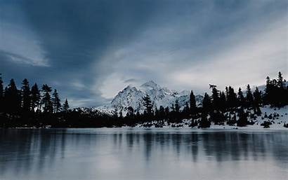 Winter Frozen Forest Snow Lake Wood Desktop