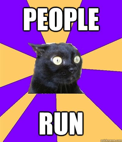 Anxiety Cat Memes - anxiety cat memes quickmeme