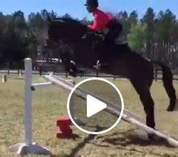 Red On Right | Eventing Nation - Three-Day Eventing News ...