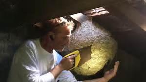 Comment Tuer Un Frelon : autopsie d 39 un nid de frelons asiatiques youtube ~ Melissatoandfro.com Idées de Décoration