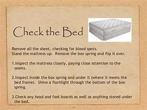 ga bed bugs With what to look for in a mattress