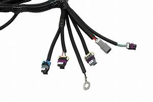 Aem Electronics Releases 58x Plug And Play Harness For