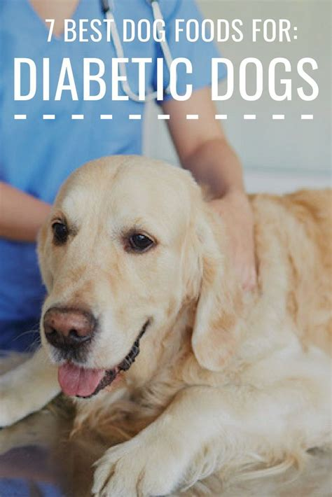 Diabetes is a metabolic disorder that affects millions of people, but did you know that dogs can get it too? Pin on Dog Nutrition 101