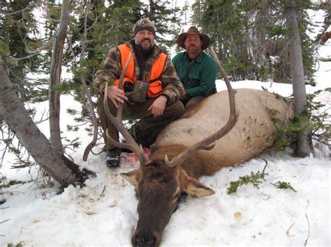 elk montana hunt