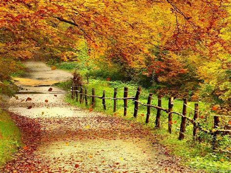 Hd Beautiful Nature Scenery Wallpapers Widescreen Full