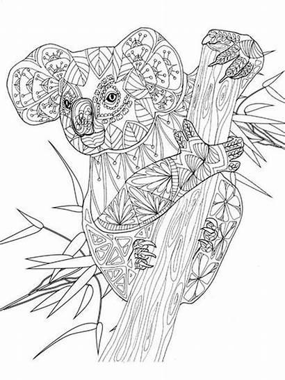 Koala Coloring Adult Mandala Printable Dieren Zentangle