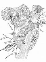 Kleurplaat Kleurplaten Erwachsene Ausmalbilder Joenayinspirations Mycoloring Geometrische Malbuch Koalas Mandalas Possum Thewhitestyle Abstrakte 1628 Downloaden Geometrisches Tier Malbücher Printen Omnilabo sketch template