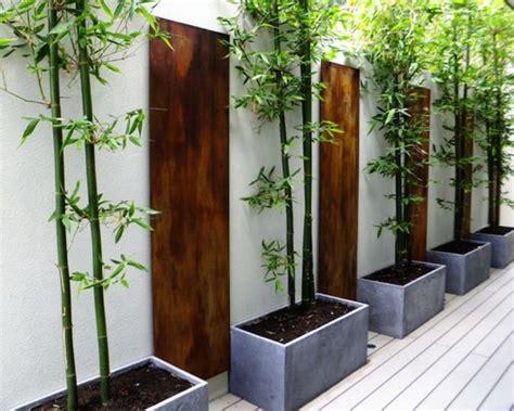plantation bambou en pot planter des bambous dans jardin quelle bonne id 233 e