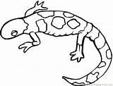 Lizard Monitor Drawing Basilisk Coloring Pages Getdrawings sketch template