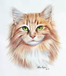 drawings of cats 25 beautiful cat drawings from top artists around the world