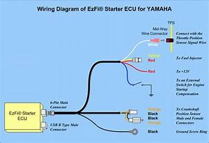 Yamaha Outboard Motor Wiring Diagrams