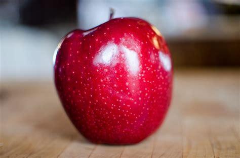 Free Images : fruit, sweet, flower, petal, ripe, food ...