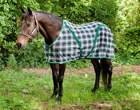Rambo Waterproof Dog Rug Custom Embroidered Throw Blankets Knitting Instructions For Baby Petunia Pickle Bottom Blanket Car Battery Heater In Crib Flower Arizona Sun Mission Chest Pony Saddle