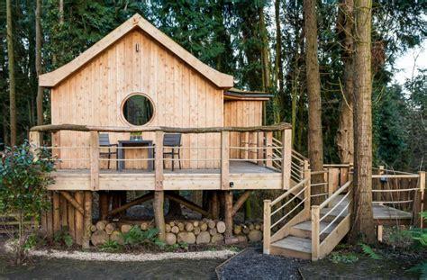 home goods woodland a tiny woodland cottage home design garden architecture blog magazine