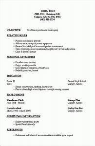 Simple Cv Form Resume Outline 2 Job Resume Template Resume Outline