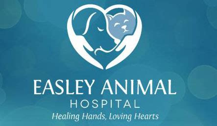 An hmo delivers all health services through a network of healthcare providers and facilities. Veterinarian in Easley, SC   Easley Animal Hospital