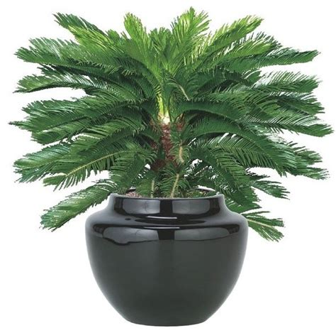 outdoor faux plants outdoor artificial plant artificial flowers plants and
