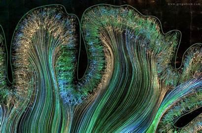 Brain Cortex Neuralink Motor Axons Through Into