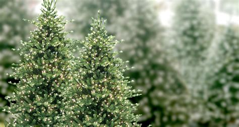 neuman artificial la s best trees decor los angeles aldik home
