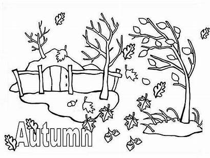 Autumn Coloring Season Leaf Fall Pages Drawing