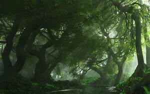 Forest, Desktop, Backgrounds, Free, Download