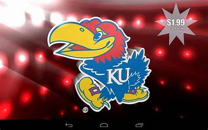 Ncaa Teams Gameday College Wallpapers Android