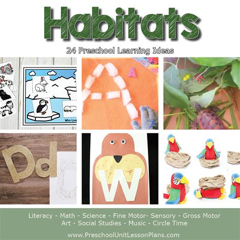 a year of preschool lesson plans bundle where 165 | Preschool Lesson Plans Habitats