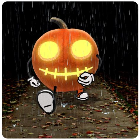 jack  lantern halloween gif  chris timmons find