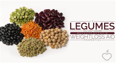 legumes cuisine 7 legumes you cannot ignore because of their weight loss
