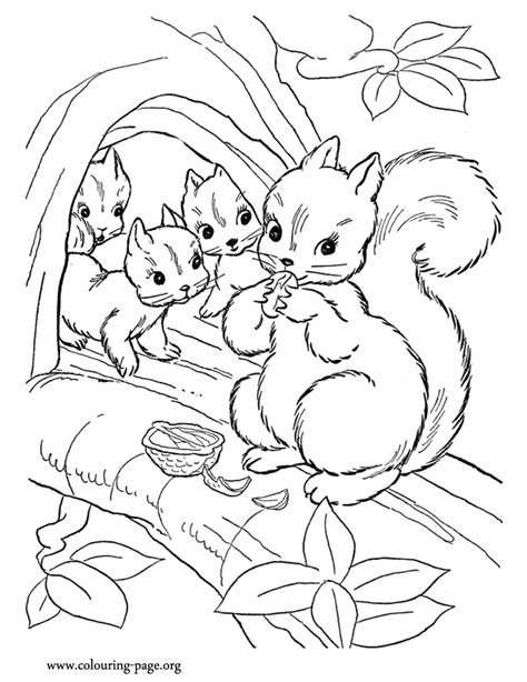 squirrels mommy squirrel   cubs coloring page