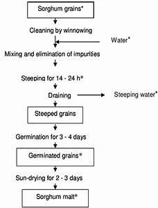 General Flow Diagram Of Traditional Malting Of Sorghum