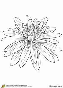 Dessin Fleurs De Lotus : coloriage fleur de lotus facile sur ~ Dode.kayakingforconservation.com Idées de Décoration