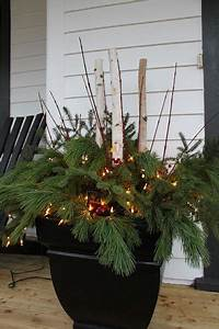 pots, with, fresh, greens, and, stems, for, christmas, or, just, winter