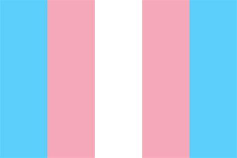 transgender pride color palette