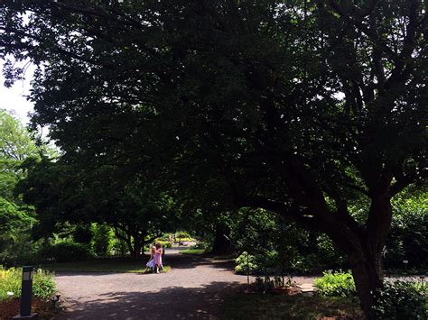 Botanischer Garten Leipzig Veranstaltungen by Botanischer Garten Schmetterlingshaus Leipzig
