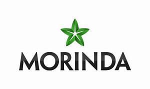 Morinda, Inc. - Wikipedia Morinda