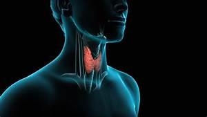 Thyroid Surgery  Thyroidectomy
