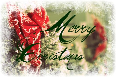 christmas sms for professional merry cards wishes greetings and jokes