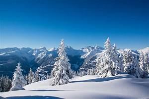 winter snow mountain tree spruce HD wallpaper