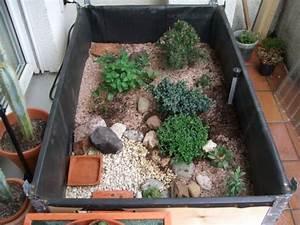 Pflanzen Terrarium Einrichten : balkon landschildkr tengehege ja aber nicht generell ~ Orissabook.com Haus und Dekorationen