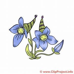Bilder Blumen Kostenlos Downloaden : blume bild kostenlos lustige blume ~ Frokenaadalensverden.com Haus und Dekorationen