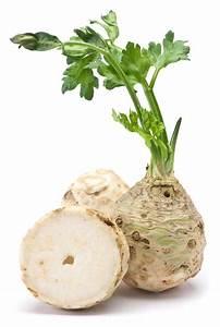 On Celery  Seduction  Science And Salad  U2013 Jane Philpott U0026 39 S