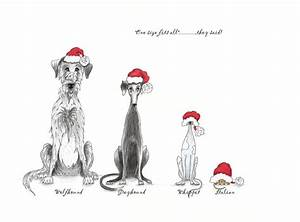 One Fits All Matratze : 39 one size fits all 39 forever hounds trust christmas card ~ Michelbontemps.com Haus und Dekorationen
